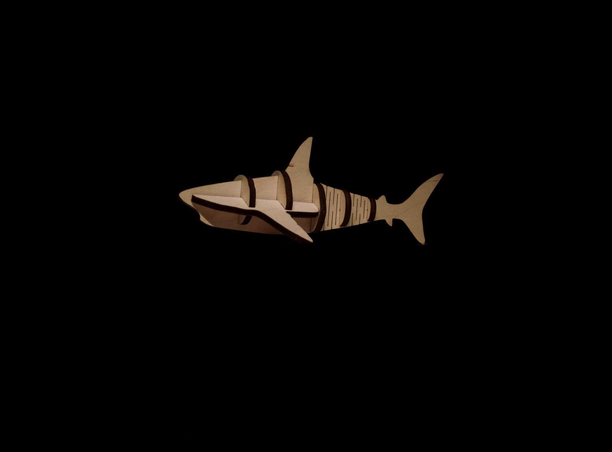 ზვიგენი, ასაწყობი პაზლი